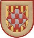 Parche de la Brigada de la Defensa Operativa del Territorio (BRIDOT) IV