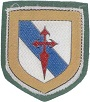 Parche de la Brigada de la Defensa Operativa del Territorio (BRIDOT) VIII